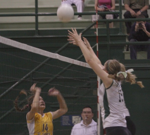 Volleyball loses to St. Francis in five games