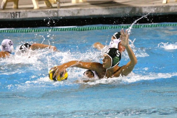 Paly boys' water polo defeats Los Gatos 13-4