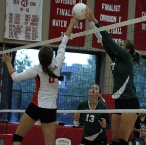 Paly volleyball sweeps Castilleja in three games