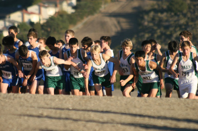 Boys' cross country qualifies for CCS event